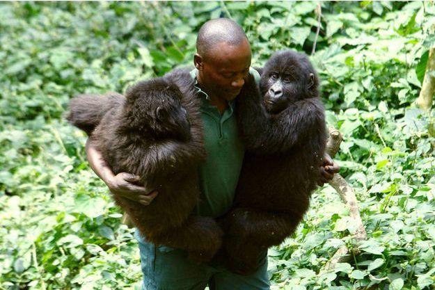 Les rangers du parc des Virunga font des rondes avec une kalachnikov sous le bras