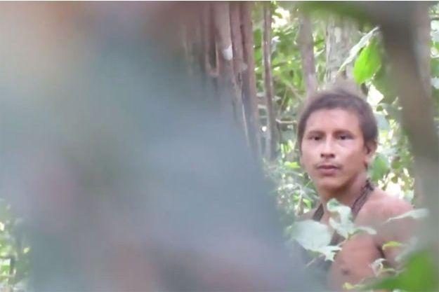 Un membre de la tribu Awa, filmé par une association de vidéastes indigènes, par l'intermédiaire de l'ONG Survival International.