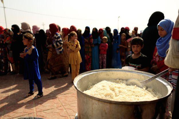 Distribution de nourriture à des réfugiés en Irak.