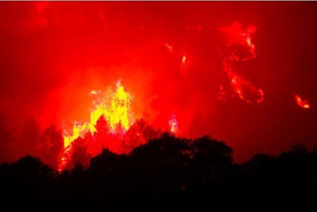 Le feu jeudi près de Monze, dans l'Aude.