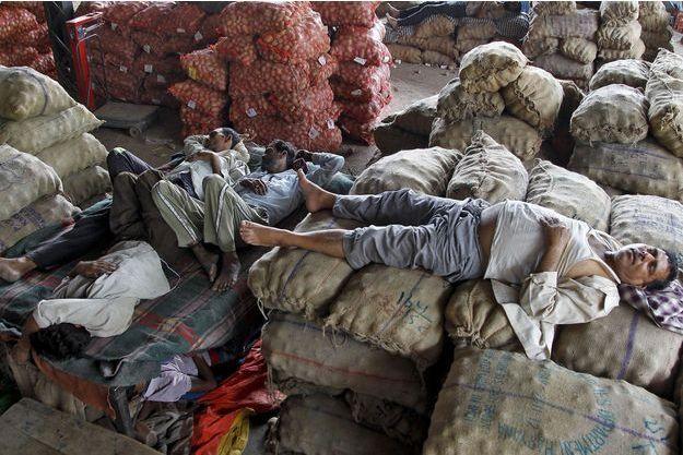Des vendeurs se reposent à l'ombre à Chandigarh, en Inde.