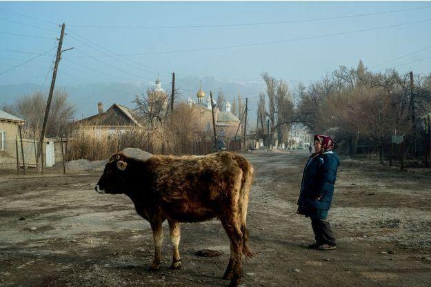 A l'aube, une éleveuse emmène sa vache aux pâturages. Tandis que le chantier naval désaffecté rouille sous le ciel azur (ci-dessous)