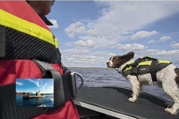 Meurtre à bord du Nautilus : le flair exceptionnel du chien Ben