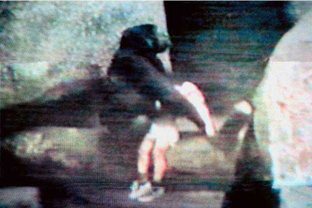 En 1996, Binti Jua tenant dans ses bras un garçonnet tombé dans son enclos du zoo de Brookfield, dans l'Illinois.