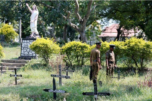 Photo prise dans un cimetière où de nombreuses tombes provisoires ont été creusées.