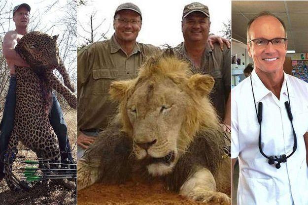 Walter Palmer, le dentiste chasseur qui a tué Cecil le lion.