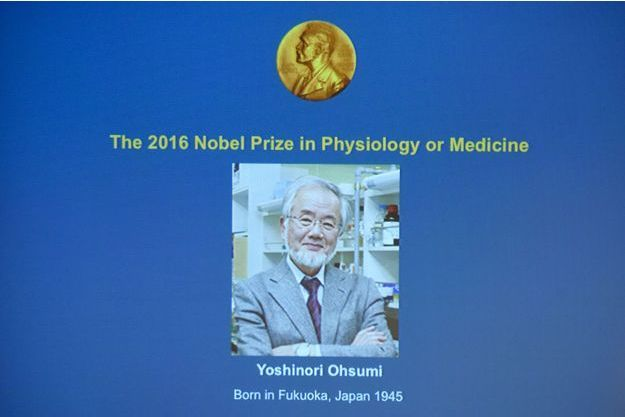 Le professeur japonais Yoshinori Ohsumi