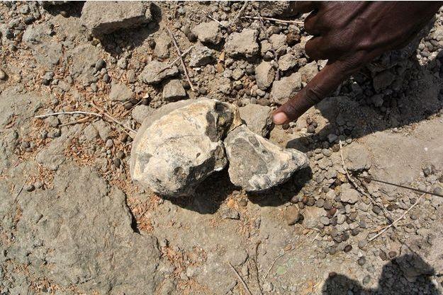 Le crâne a été retrouvé lors d'une fouille en Ethiopie.