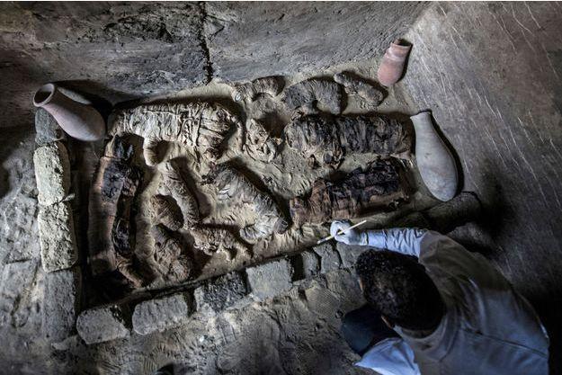 Des chats momifiés ont été retrouvés dans une nécropole égyptienne.