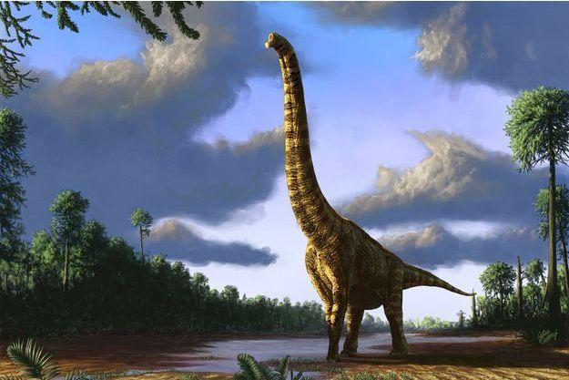 Illustration d'un brachiosaure.