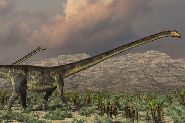 Illustration d'un Diplodocus.