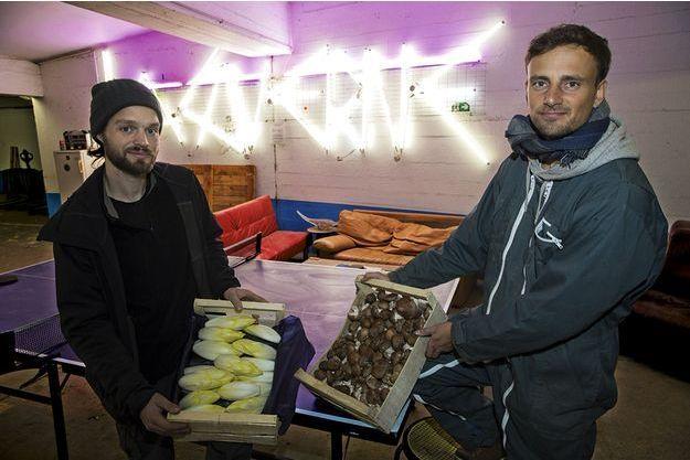Porte de la Chapelle, Jean-Noël Gertz (à g.) et Théophile Champagnat cultivent des endives et des champignons dans la première ferme urbaine souterraine de France.
