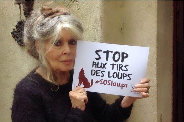 Avec le collectif Cap Loup, Brigitte Bardot se mobilise sur les réseaux sociaux contre les tirs autorisés