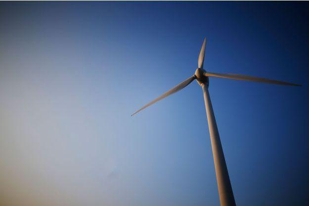 Des éoliennes sont accusées de tuer des vaches en Loire-Atlantique