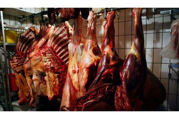 De la viande de cheval dans une chambre froide en Allemagne.