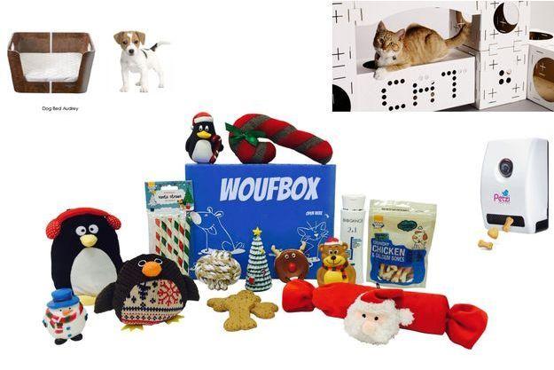 Idée De Cadeau Pour Noël.Noël J 11 Idées Cadeaux Pour Vos Animaux