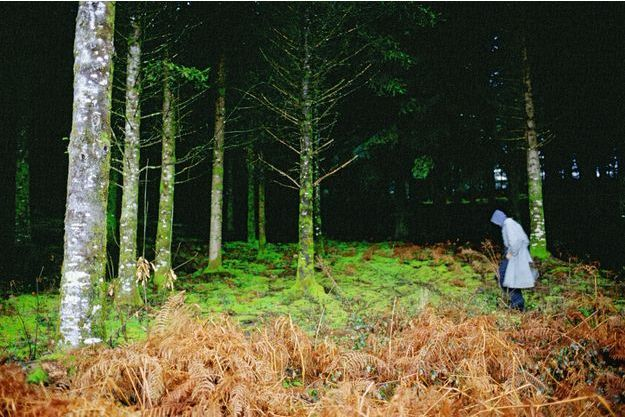 « Guido in the forest, Dordogne », 2005.