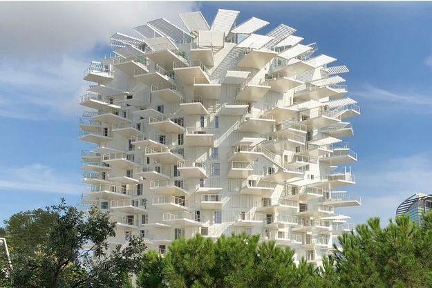 L'Arbre blanc à Montpellier.
