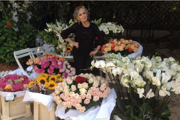 Brigitte Bardot a posté cette photographie où elle pose parmi les fleurs reçues pour son anniversaire sur son compte Twitter.