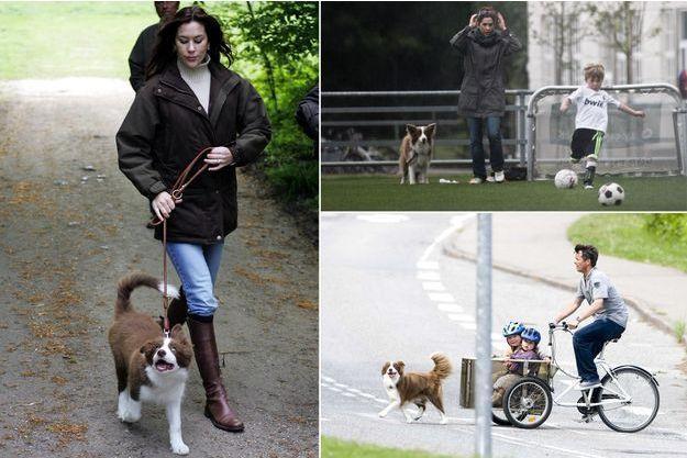 La princesse Mary et le prince Frederik de Danemark avec leur chien Ziggy