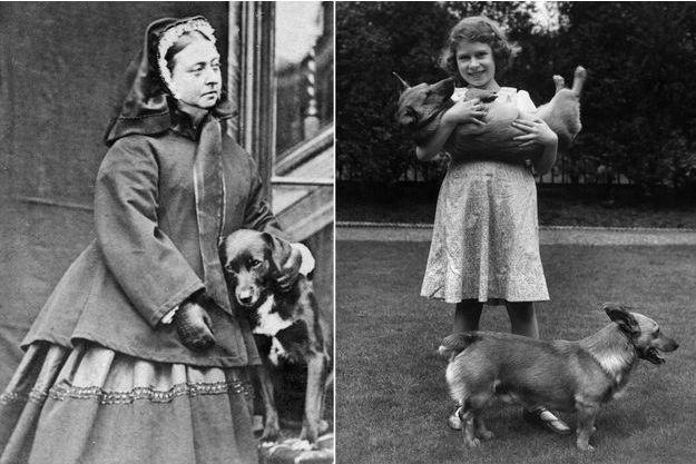 La reine Victoria avec son chien Sharp en 1867 – La princesse Elizabeth en 1936 avec ses corgis