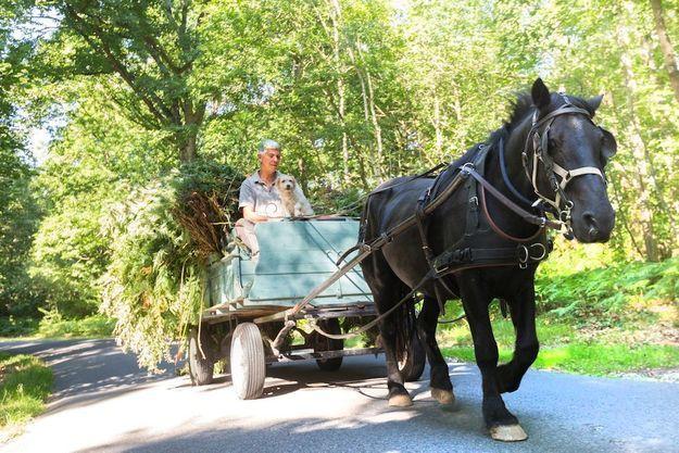 S'il utilise ce cheval pour de menus déplacements, Charles Hervé-Gruyer ne vit pas dans le passé. Passionné de sciences, il fait une synthèse inédite entre connaissances actuelles et anciennes.