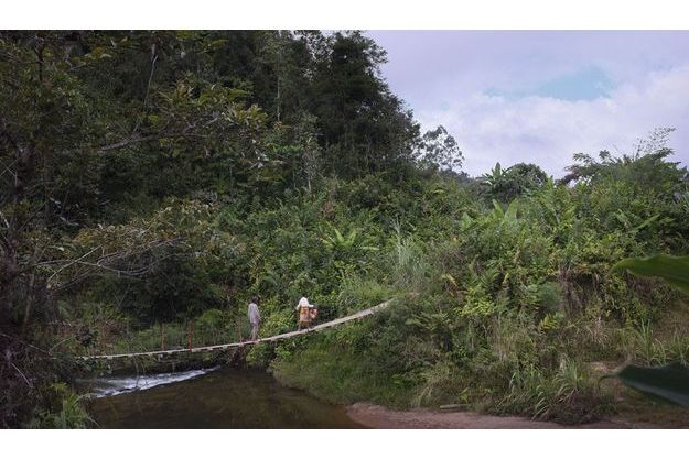 Madagascar: la réserve de Vohimana menacée.