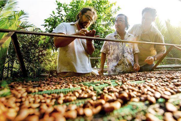 Samuel Maruta (à gauche) et Vincent Mourou (à droite) en train de sélectionner leurs fèves dans la jungle vietnamienne.
