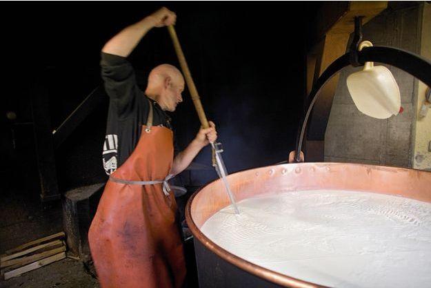 Chaque matin, le colosse Michel Tille brasse la masse granulée de son fromage avec un tranche-caillé en forme de lyre.