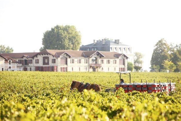 Vins Château Pontet-Canet : le sacre de la biodynamie