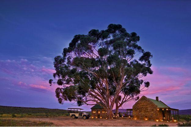 En Afrique du Sud, le Bushmans Kloof est situé dans la « région florale du Cap », classée par l'Unesco.