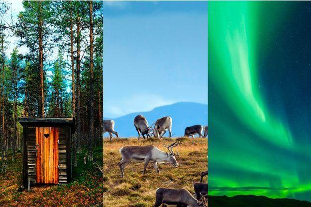 L'automne en Laponie.