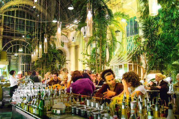 Au cœur du Burggarten, le parc le plus original de cette ville très verte, le Palmenhaus, époustouflante serre aux palmiers, est aussi un restaurant où l'on peut prendre un verre à toute heure.