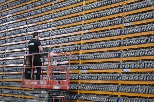 """Dans l'entreprise Bitfarms à Magog, au Québec, en mai 2019. Derrière le mur de centaines de ventilateurs, des serveurs qui """"extraient"""" des bitcoins."""