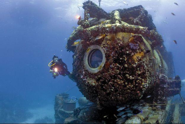 L'Aquarius, créé en 1993, est couvert de coquillages comme un rocher. Son budget de fonctionnement est menacé pour des raisons d'économie.