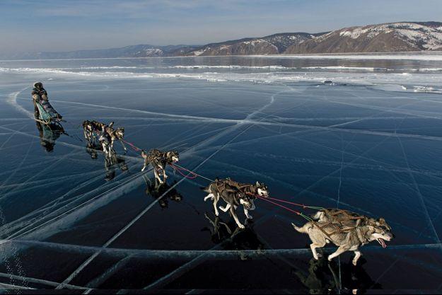 Mercredi 12 mars, Nicolas et ses dix chiens remontent vers le nord, près de la rive ouest du lac, entre Bougouldekia et Krostoski.