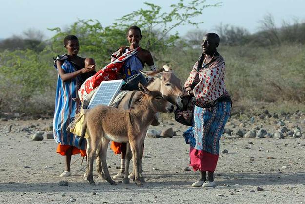 Les femmes Maasaï vont de maison en maison avec leurs ânes.