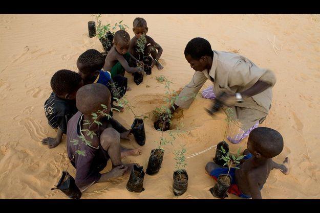 Le défi. Un habitant d'Egoyan entouré d'enfants en plein travail écolo. Egoyan est un village modèle. En quatre ans, ses 300 habitants ont réussi à stabiliser 100 hectares au bord du Niger grâce à des plantations d'acacia (photo) et d'eucalyptus. Dans le cadre du Programme de lutte contre l'ensablement (PLCE), la communauté perçoit 150 euros par hectare « fixé ».