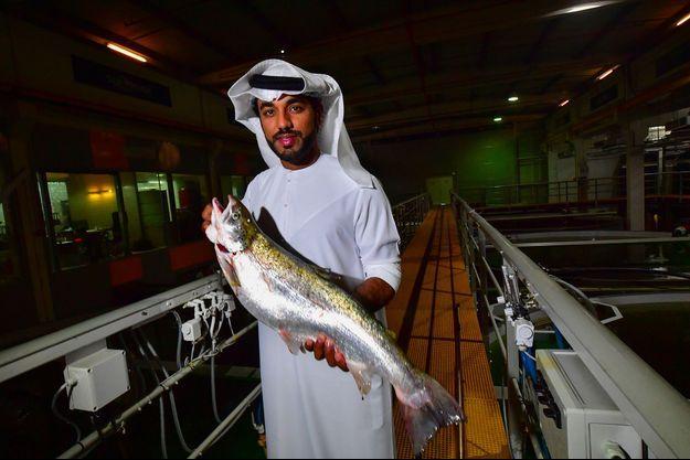 """Badr ben Moubarak, directeur général de la ferme piscicole """"Fish Farm""""."""