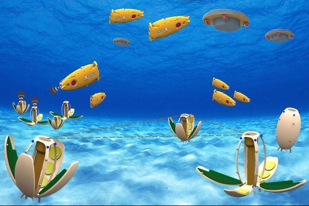 120 robots vont être mis au point pour analyser la pollution dans eaux dans les canaux de Venise.