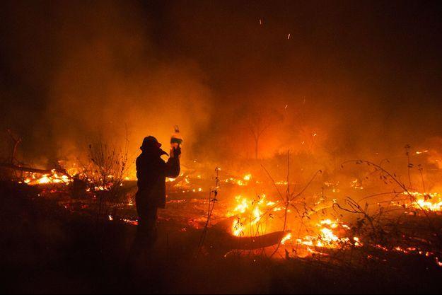 Un pompier bolivien déverse de l'eau sur les flammes qui rongent la forêt amazonienne.