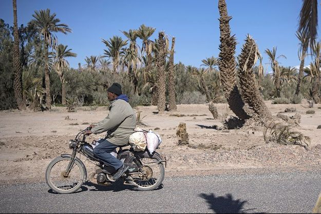 Dans l'oasis de Skoura, au Maroc, en janvier 2020, durant une sécheresse.