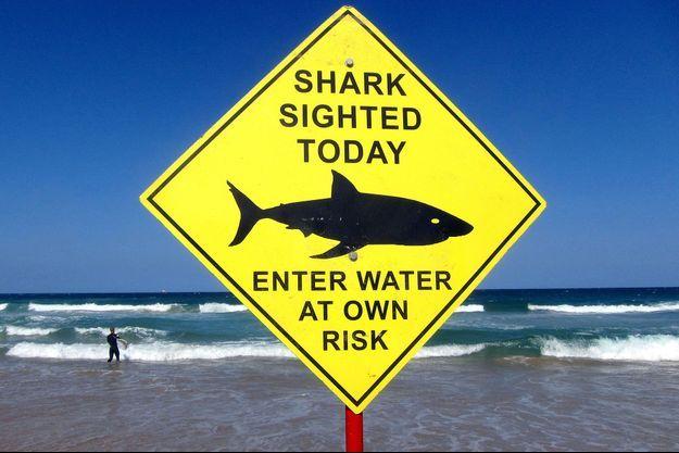 Un panneau alertant de la présence de requins dans les eaux, en Australie en 2015.