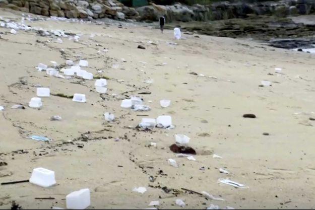 Des masques chirurgicaux et boîtes en plastiques échouées sur une plage, à Sydney.