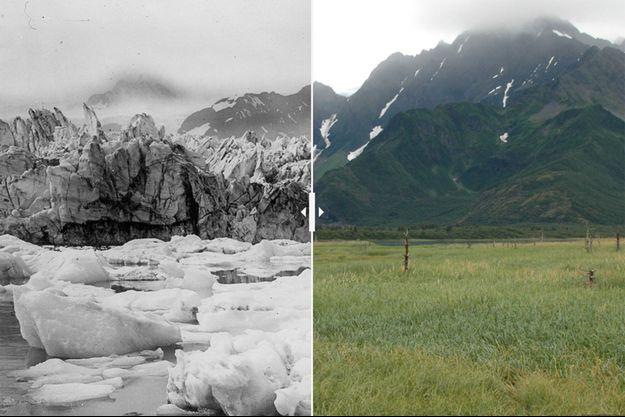 Le glacier Muir, en Alaska, en 1941 puis en 2004.