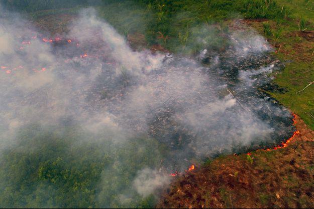 La forêt amazonienne en flammes.