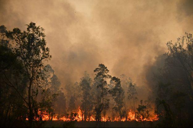 Les incendies du mois d'octobre 2019 en Australie.