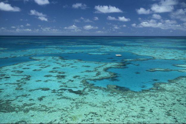 Illustration de le Grande barrière de Corail (Australie)
