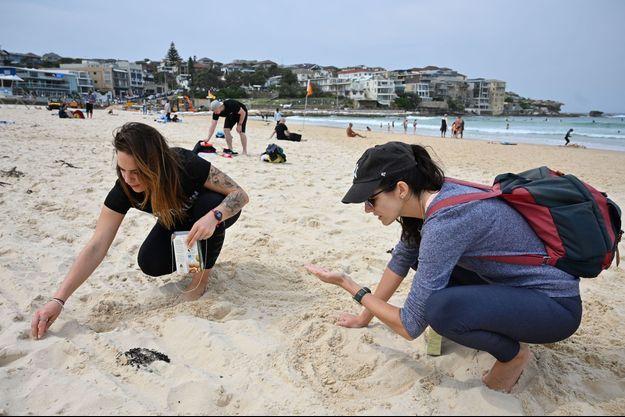 Des bénévoles nettoient la plage de Bondi, près de Sydney en Australie.