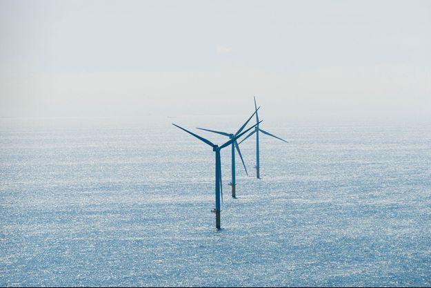 Parc éolien offshore aux Pays-Bas.